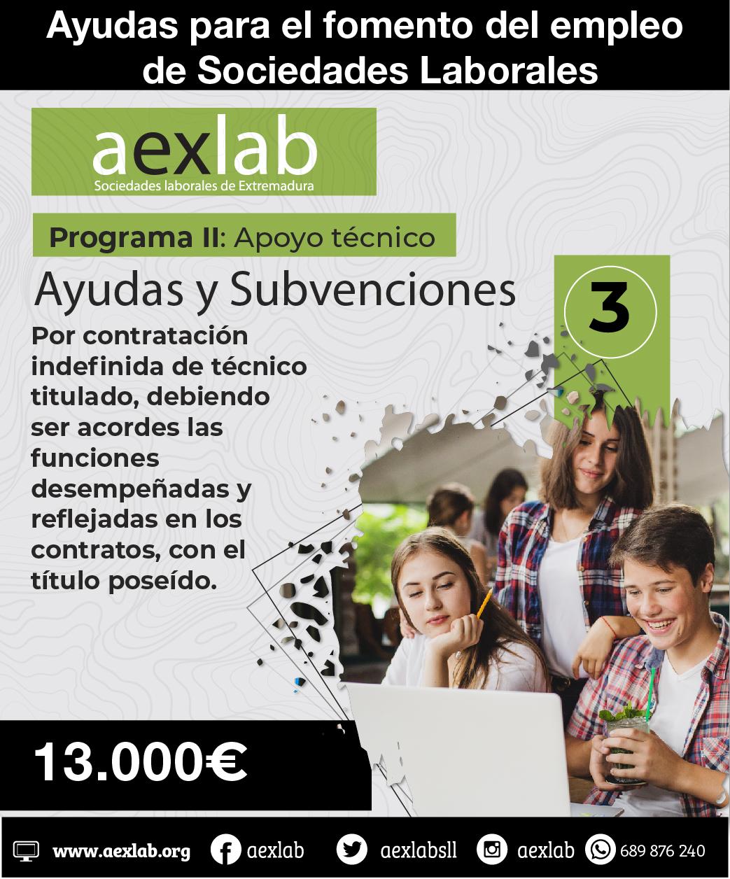Ayudas programa 2 apoyo tecnico aexlab