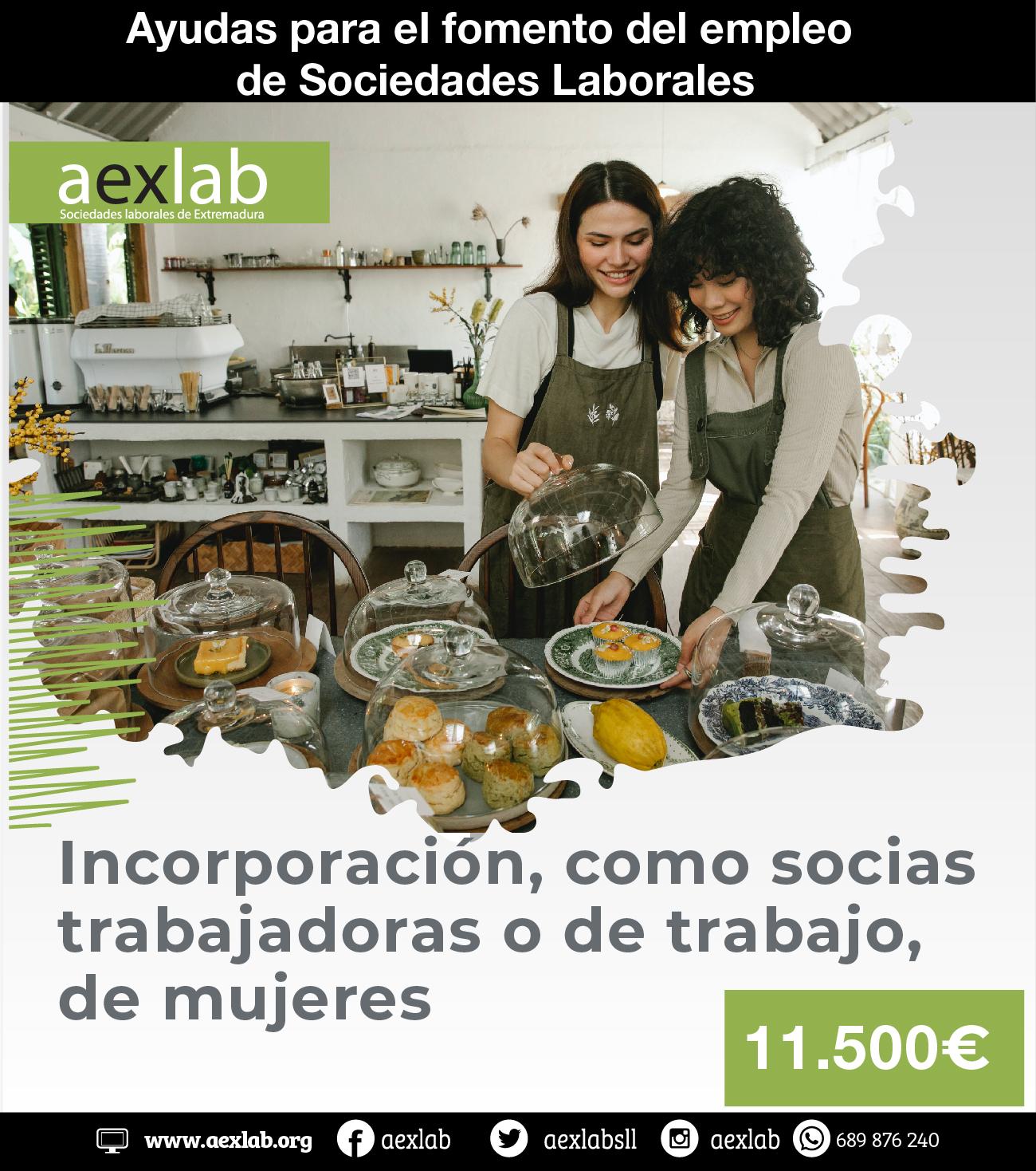 ayudas y subvenciones sociedades laborales aexlab 2021 casos-04