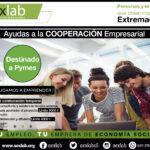 Ayudas destinadas al fomento de la Cooperación empresarial