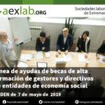 Línea de ayudas consistente en becas de alta formación de gestores y directivos de entidades de la economía social