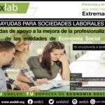 Medidas de apoyo a la mejora de la profesionalización de las entidades de Economía Social en Extremadura